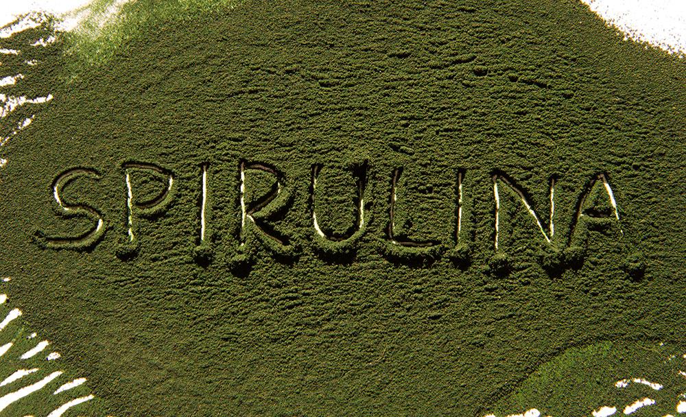 Spirulina - Mehr Gesundheit